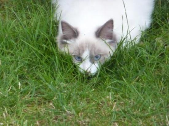 Ella en Juillet 2010